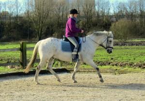 Rechtrichten, paardrijden naar ontspanning