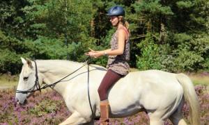 Paardrijden op basis van lichaamstaal en de juiste energie